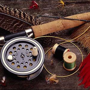 Охотничьи и рыболовные магазины Вешкаймы